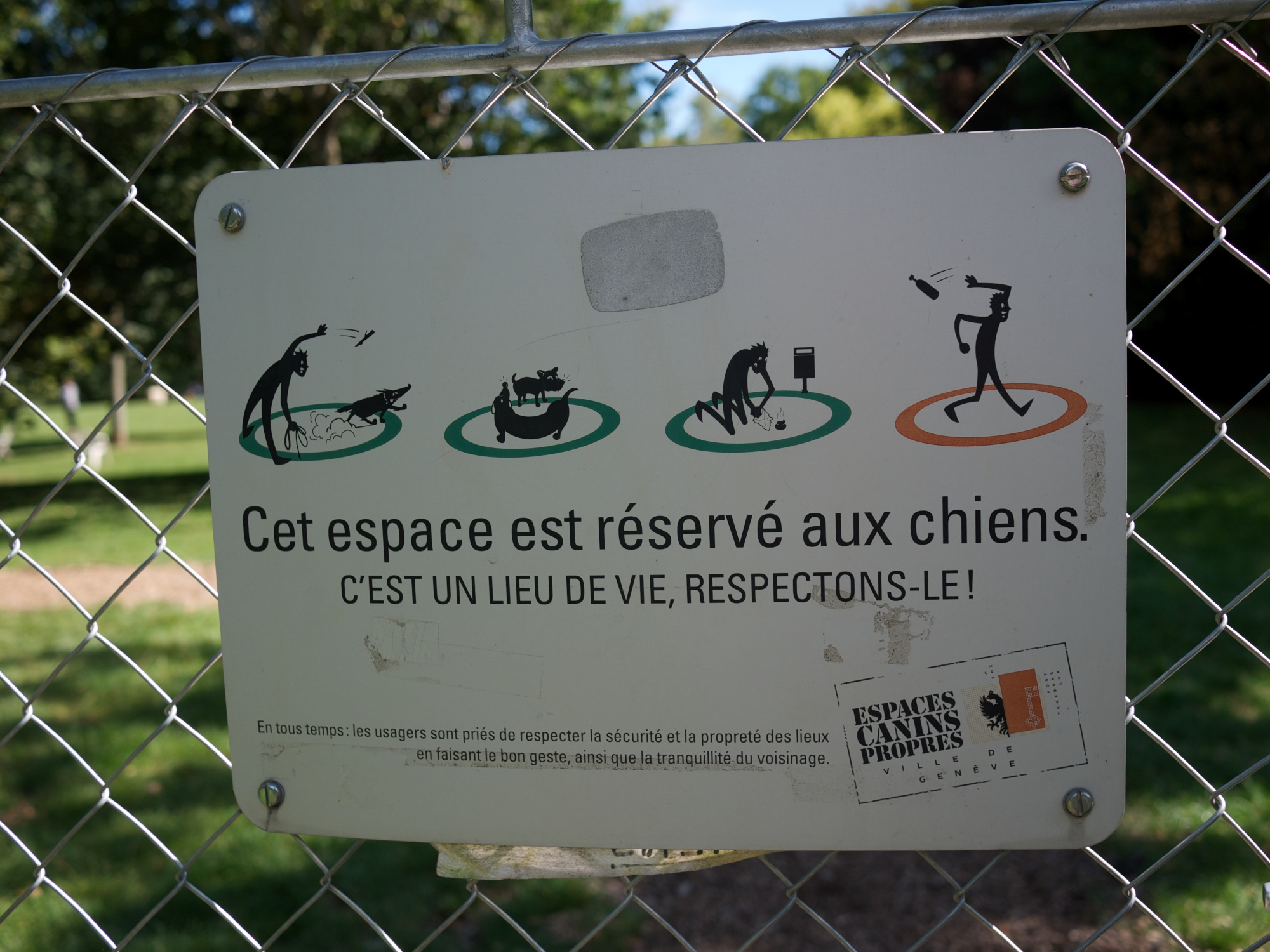 Dog Park Rules And Etiquette Dog Toys