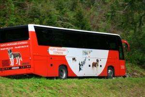 TMR St. Bernard Bus