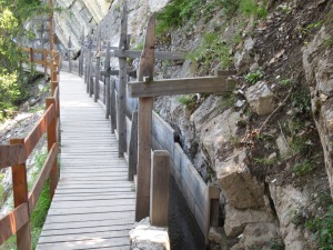 wooden walkway next to the bisse