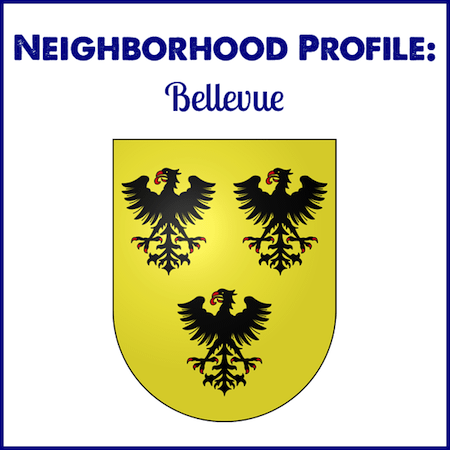 Neighborhood Profile: Bellevue