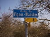 Yellow route markers near Bardonnex
