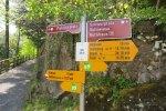The Swiss Path