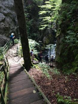Steps-at-the-Gorge-de-l'Areuse